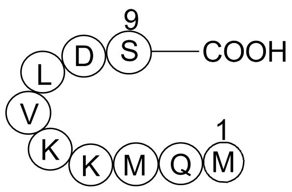Anti-Inflammatory Peptide 1