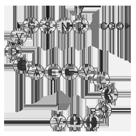 Amyloid Beta-Peptide (12-28) (human)