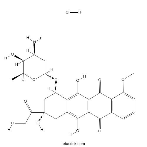 Doxorubicin (Adriamycin) HCl