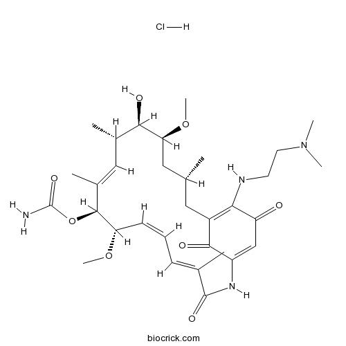 17-DMAG (Alvespimycin) HCl