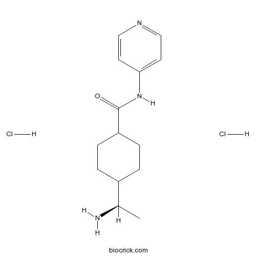 Y-27632 dihydrochloride