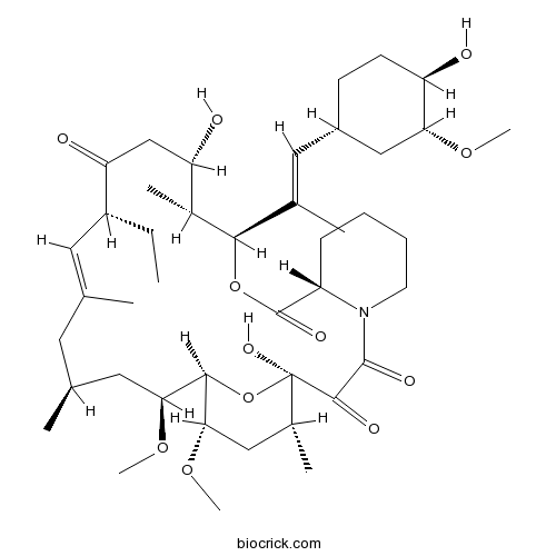 Ascomycin(FK 520)