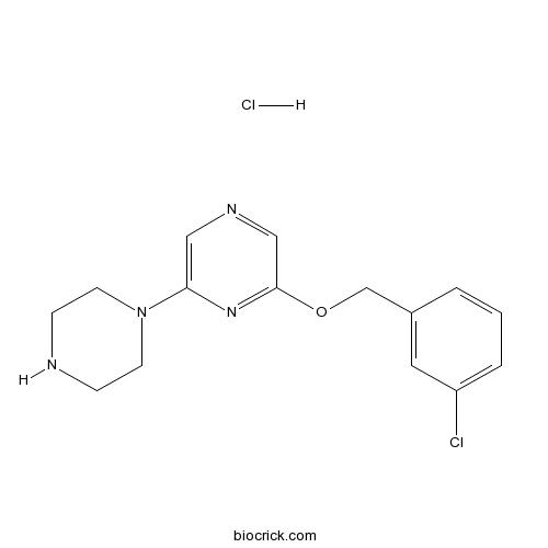 CP-809101 hydrochloride