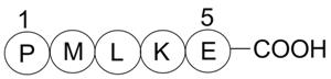 Bax inhibitor peptide P5