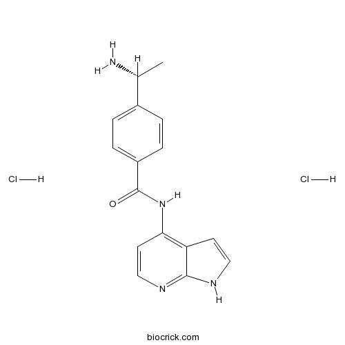 Y-39983 dihydrochloride