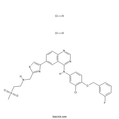 GW 583340 dihydrochloride