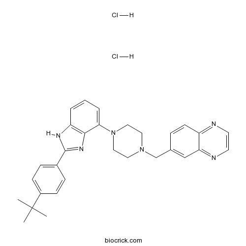 WAY 207024 dihydrochloride