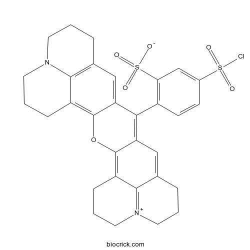 Sulforhodamine 101