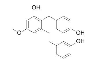 Isoarundinin II