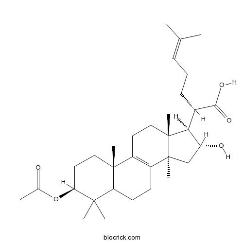 3-O-Acetyl-16 alpha-hydroxytrametenolic acid