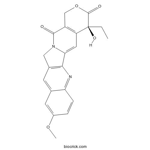 10-Methoxycamptothecin