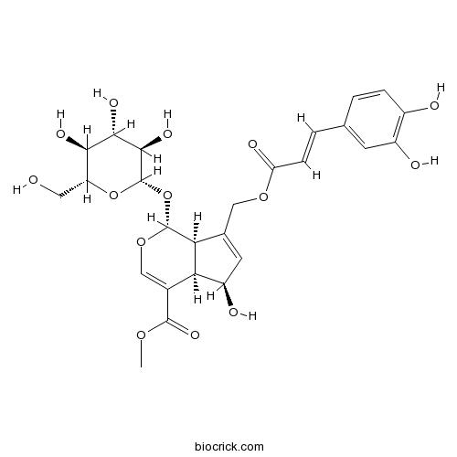 10-O-Caffeoyl-6-epiferetoside