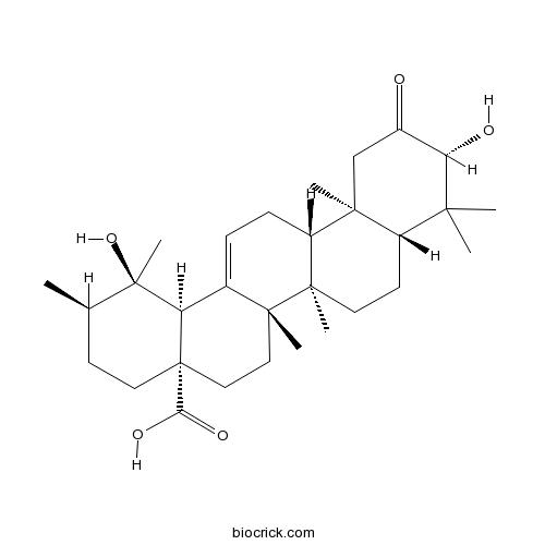 2-Oxopomolic acid